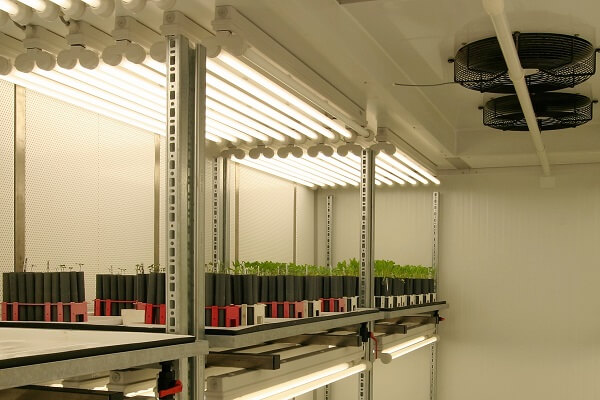 Nijssen climate room for plant growth